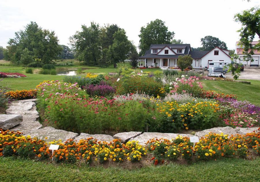 trial gardens at Wm. Dam Seeds